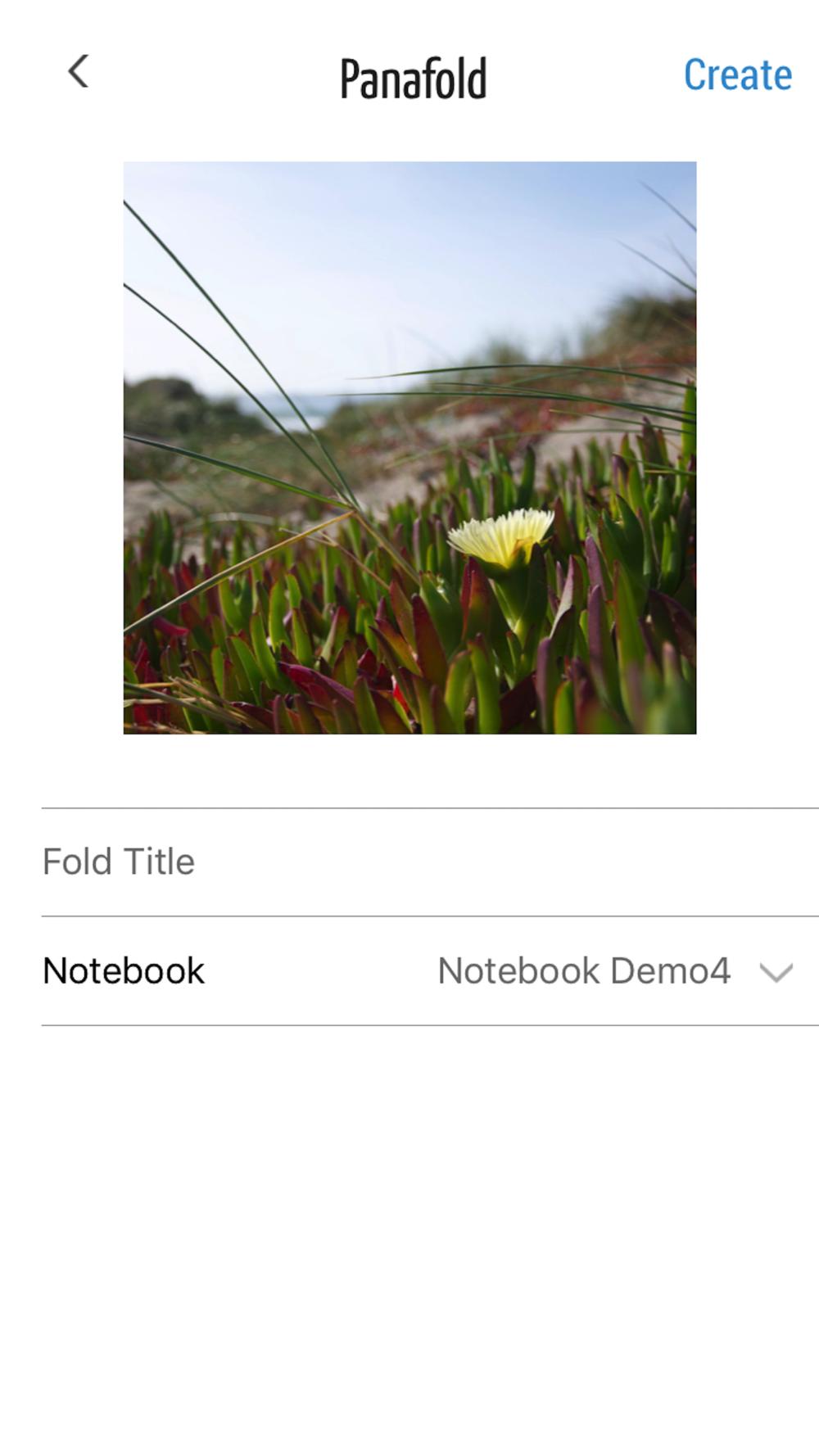 CaptureFoldPage.png