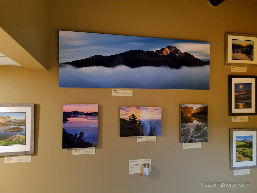 gallery hung.jpg