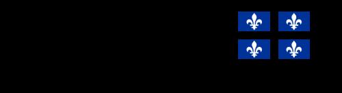 Logo_gouvQuebec-500x137.png