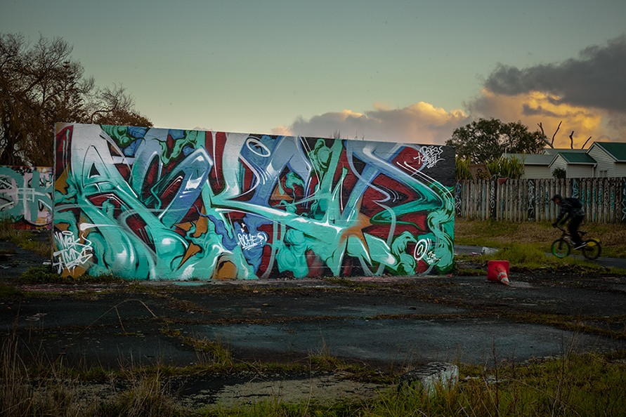 Glen Innes, Auckland 2013