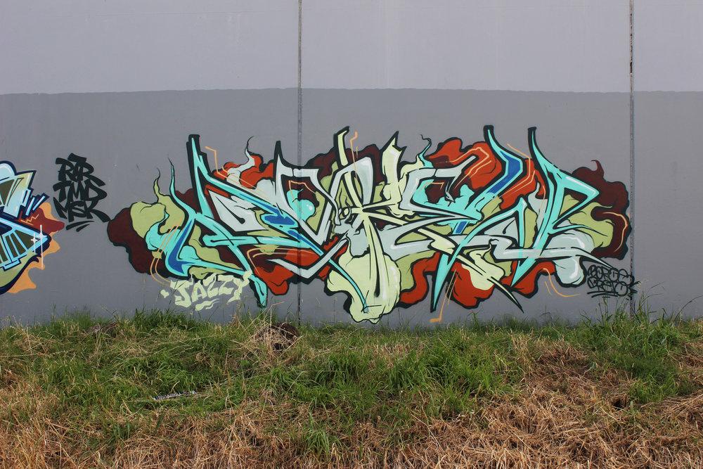 Auckland, 2019