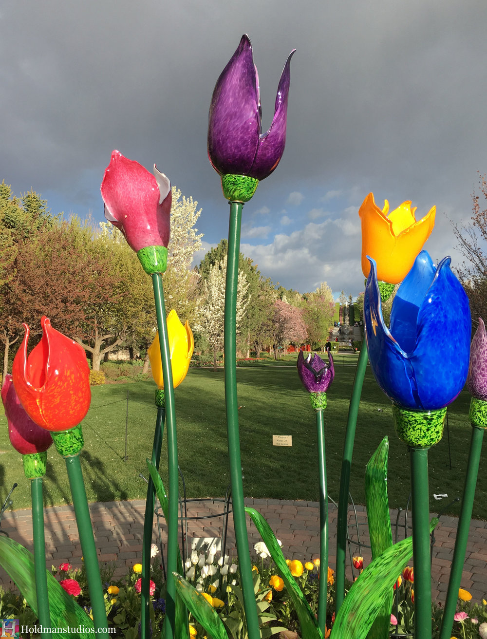 Blown Glass_Ashton Garden Tulips 5.jpg
