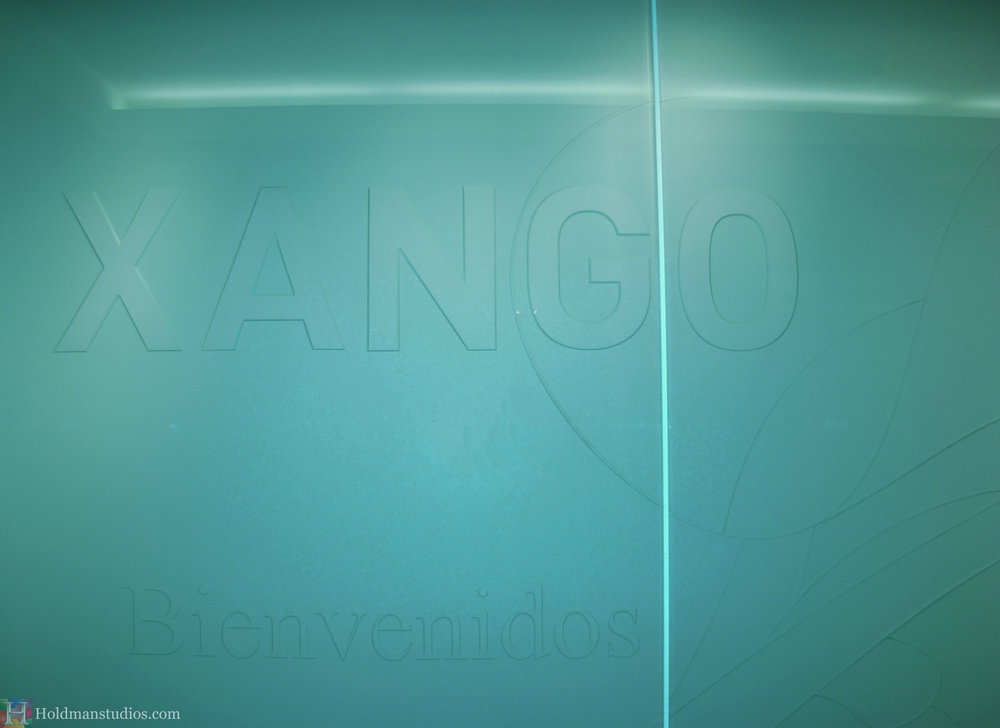 Holdman-studios-etched-art-glass-Xango-wall-crop.jpg