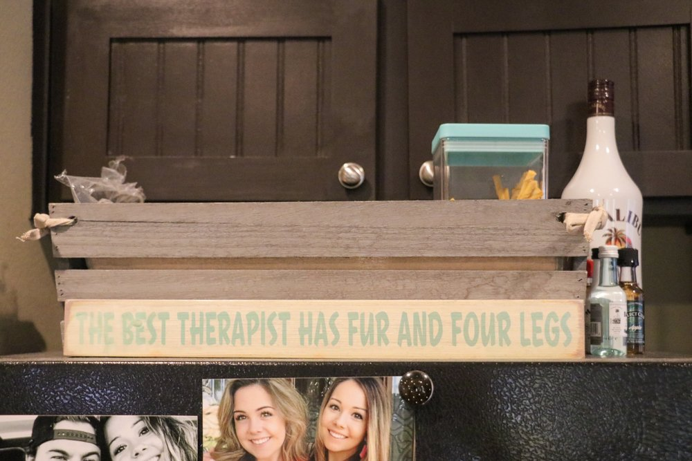 """The Best Therapist Has Fur And Four Legs"" and in the box behind it are the animals treats! Both from HomeGoods!"