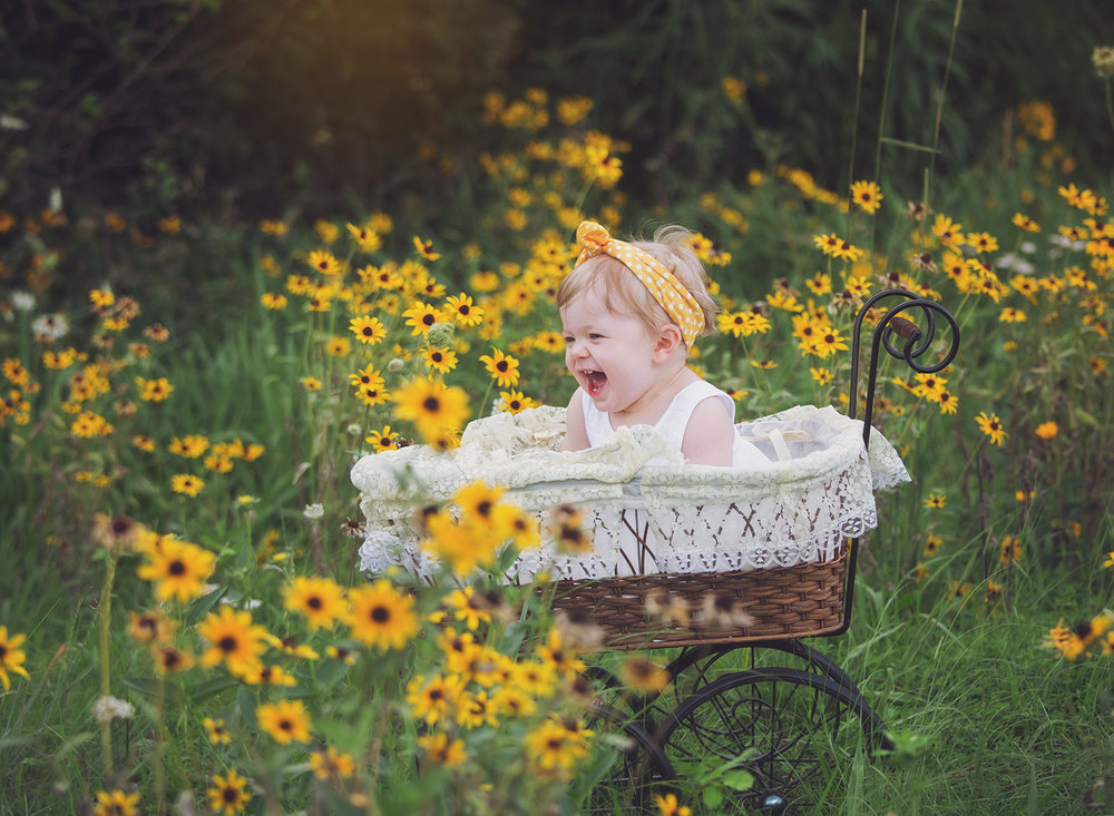 baby in baby carriage, spring baby photos, wildflowers, johnson county baby photographer