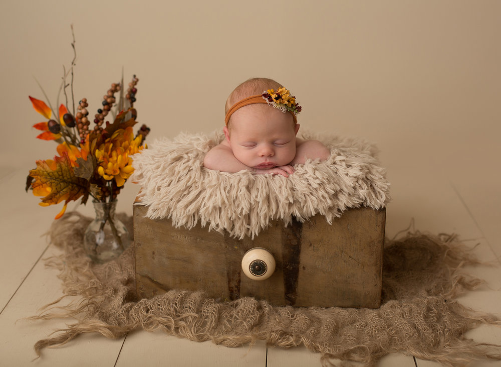 fall newborn photos