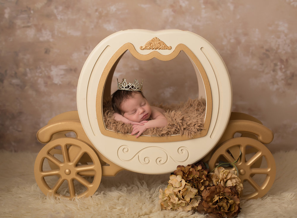 shawnee newborn pictures