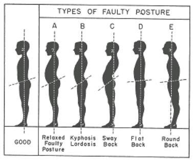 Correct Posture.png