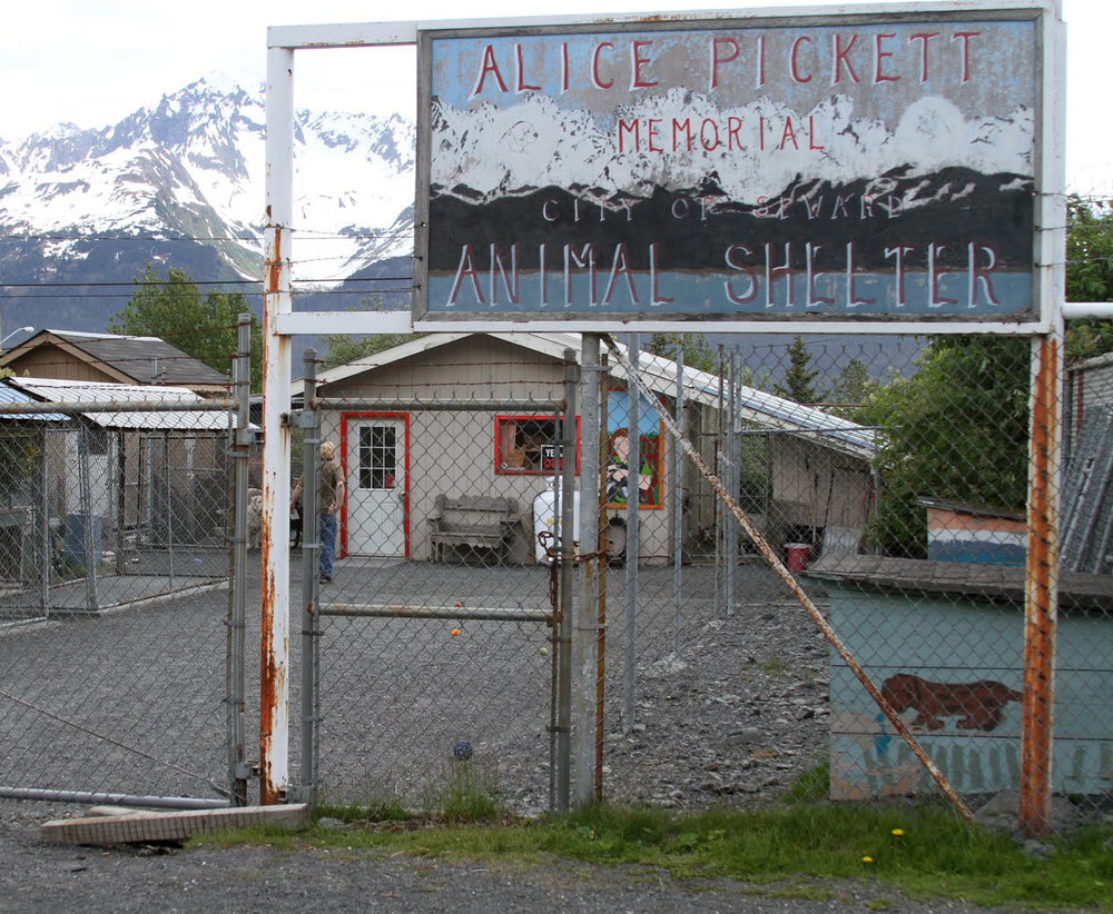 Seward, Alaska Animal Shelter