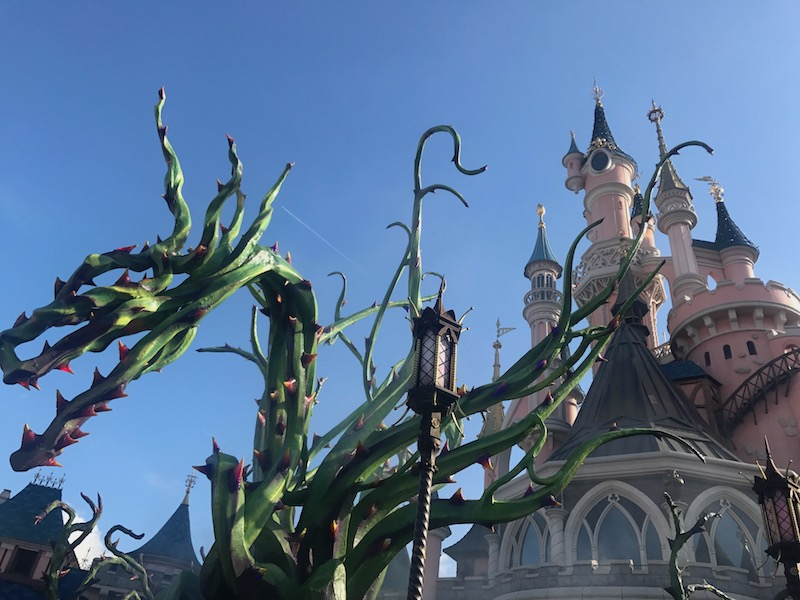 Skip the line at Disneyland Paris and spend your time taking in the amazing scenery!