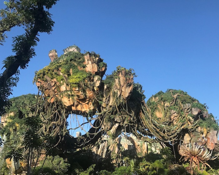 disney_world_crowds_pandora.jpg