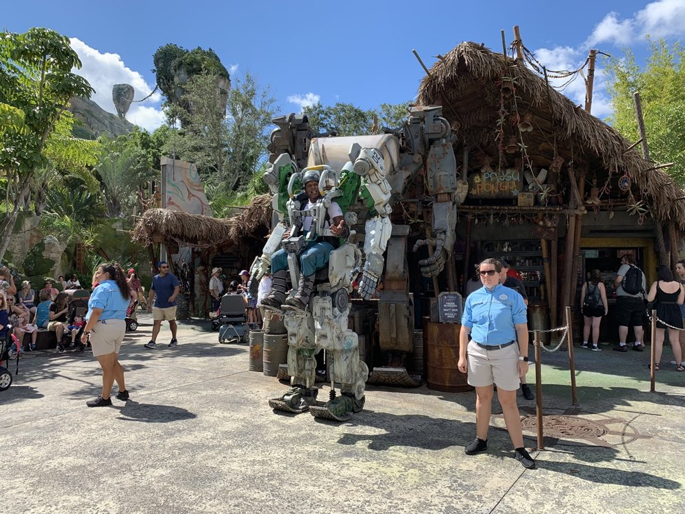 animal kingdom one day itinerary utility suit.jpg