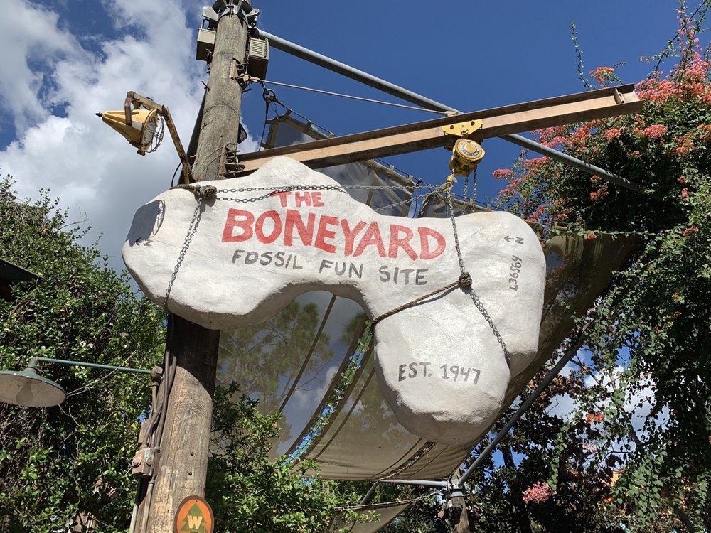 animal kingdom rides boneyard.jpg