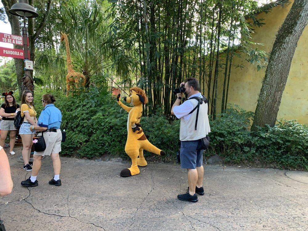 animal kingdom rides character timone.jpg