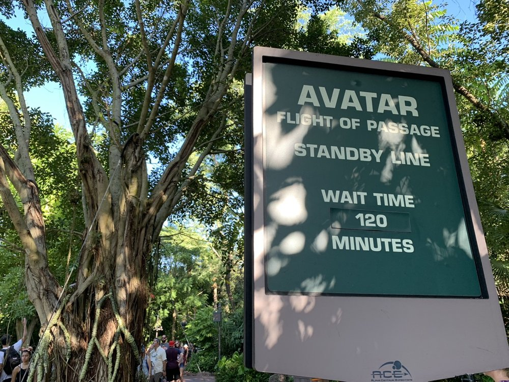 animal kingdom fastpass flight of passage line.jpg