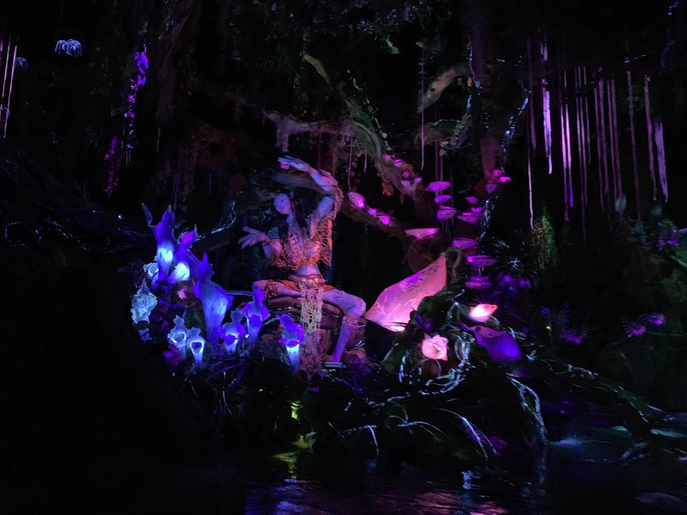 pandora world of avatar navi river journey shaman.jpg