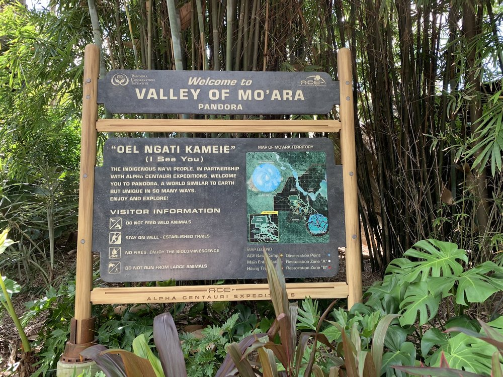 pandora world of avatar valley of moara.jpg