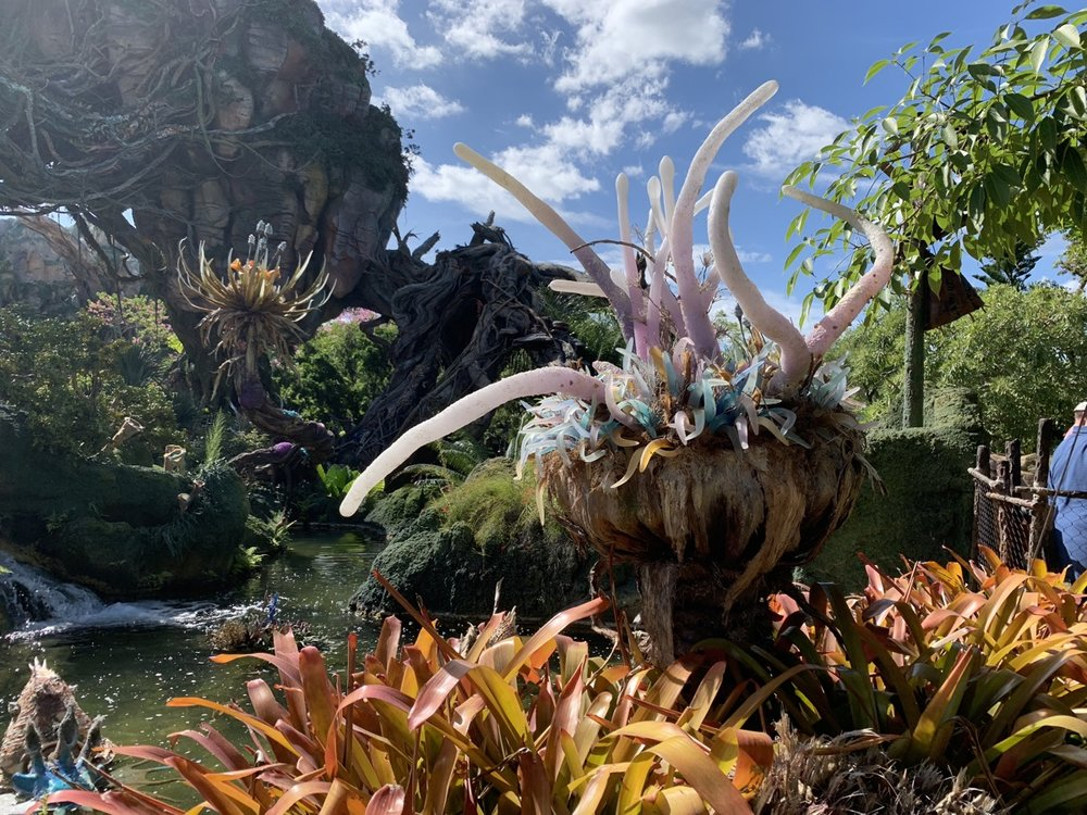 pandora world of avatar landscape day 2.jpg