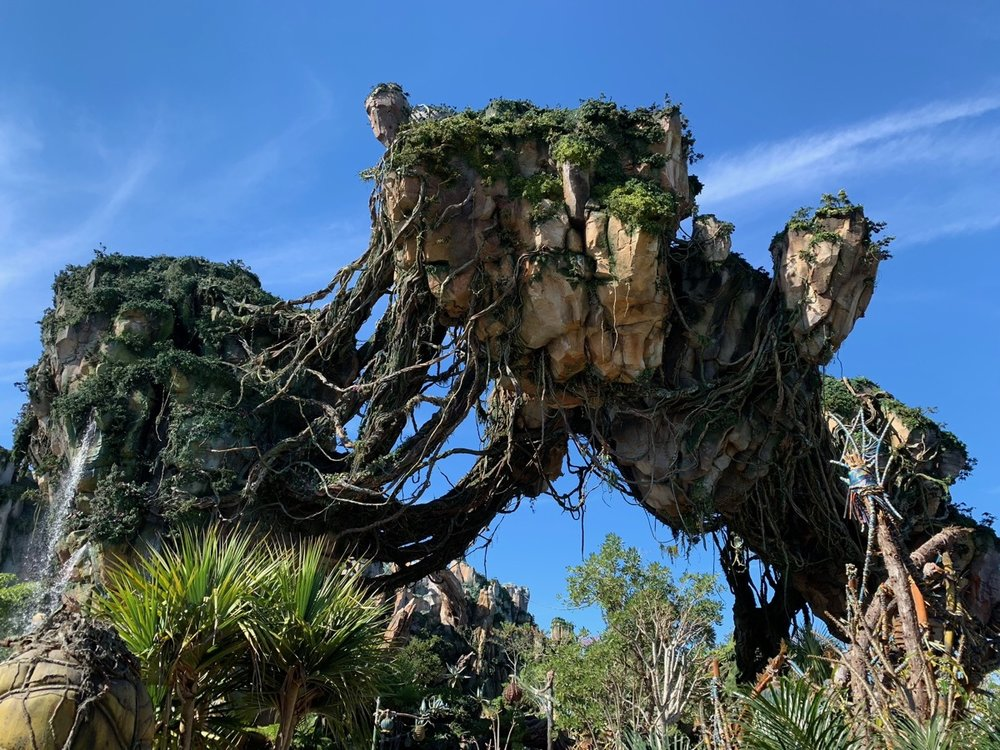walt disney world planning animal kingdom 3.jpg