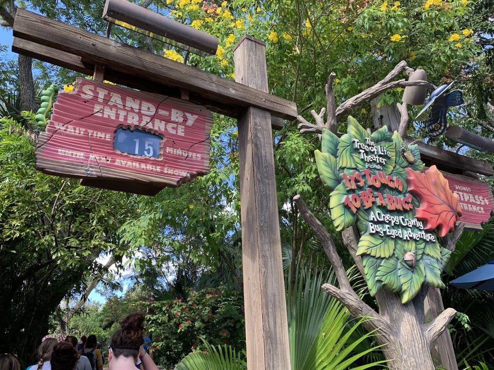 hollywood studios animal kingdom park hopping tough to be a bug.jpeg