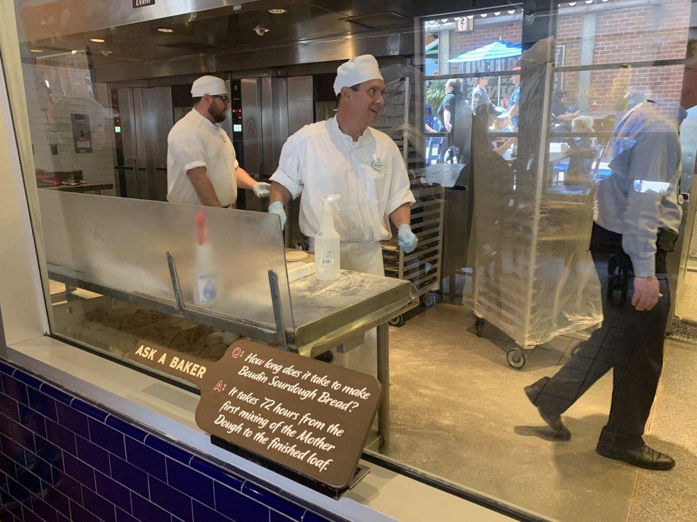 disney california adventure rides guide bakery tour.jpeg