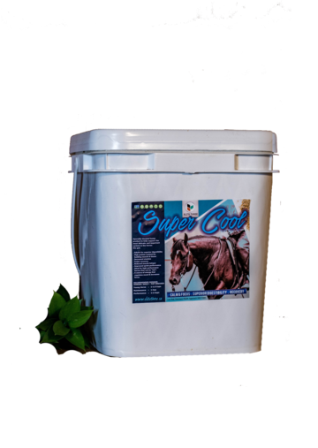 Protein may be the most misunderstood nutrient class when it comes to feeding horses. Protein is used in the formation of muscle and tissue, as well as hormones, enzymes, and antibodies.  Scientists are now tailoring feed to focus on the most important part of a horses body - the gut. Hemp Protein Fiber is one of the most easily digestible fibers on the market - combined with the benefits of hemp oil - it makes an excellent addition to feed programs.  Elite Super Cool - is a blended for maximum digestibility with calming agents not found in other fiber sources. Reducing starch and increasing fat in a horses diet has shown significant health benefits.   INGREDIENTS   Our Elite Super Cool is 100% hemp - made with exceptional quality and fair trade ingredients. All-natural, gluten-free, non-GMO, no-sugar added, certified organic formula! Guaranteed fresh. No filler.