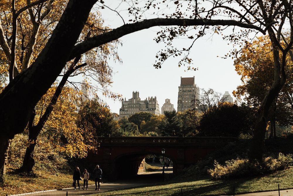 Brooklyn-1-3.jpg