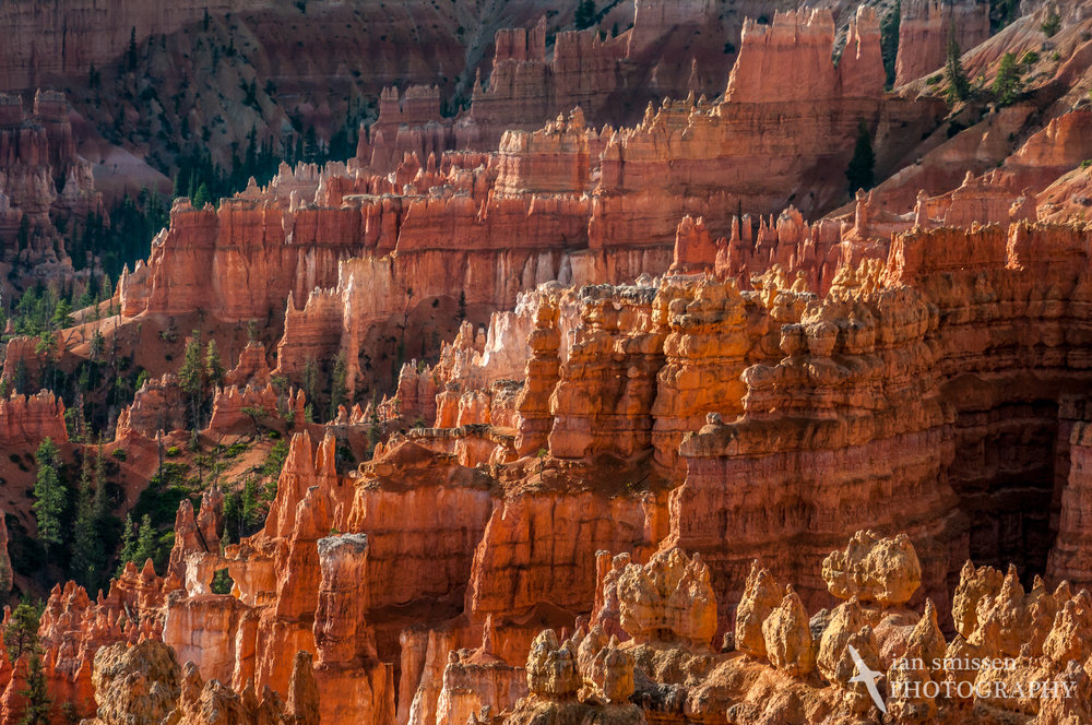 Sunrise at Sunset Point, Bryce Canyon