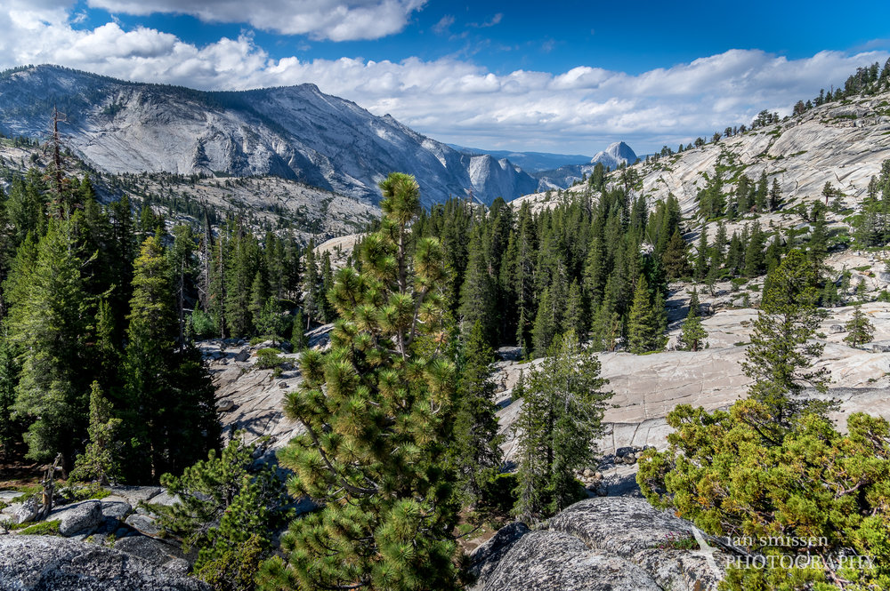 View south from Olmsted Point, Yosemite