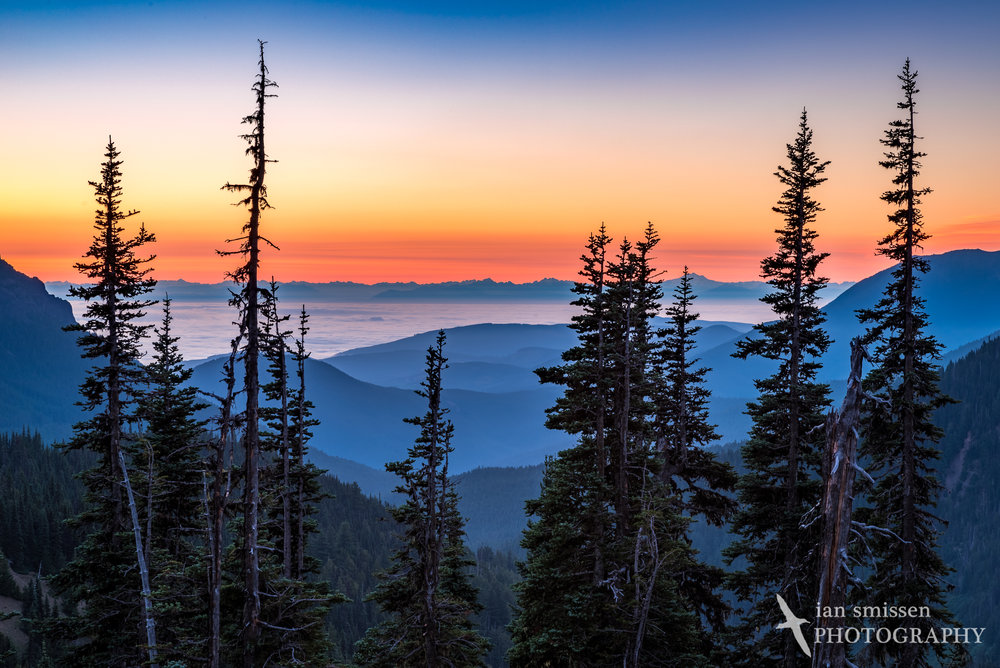 Dawn sky in the east from Hurricane Ridge