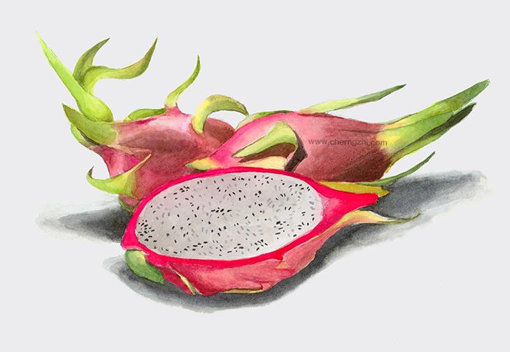 dragonfruitWeb.jpg