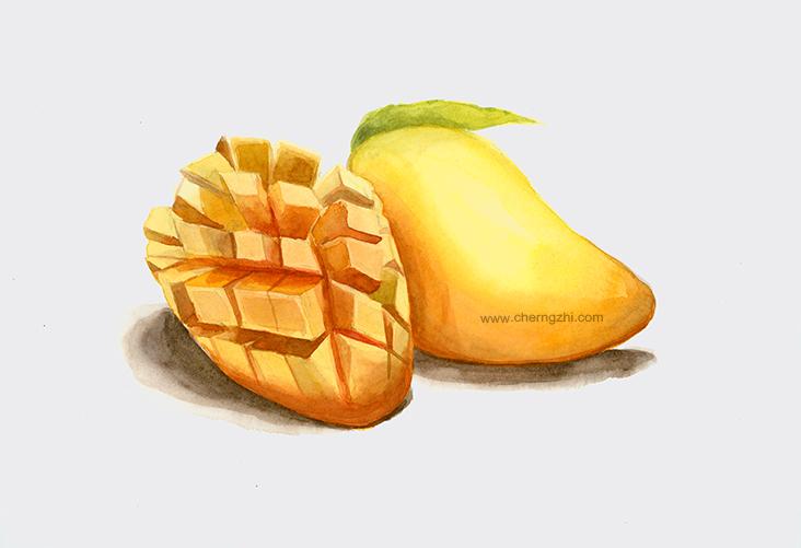mangoWeb.jpg