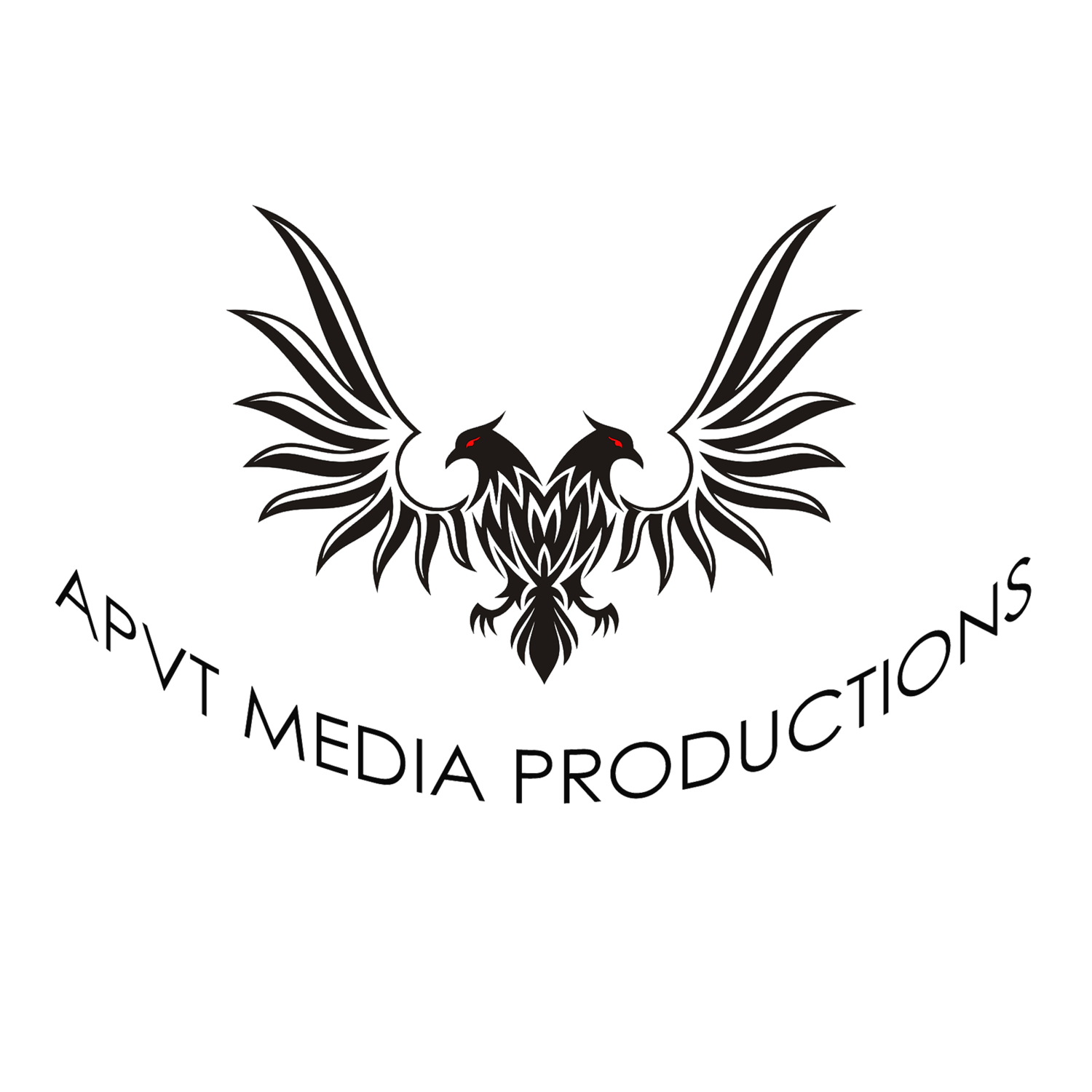 APVT Media - Aerial Photography & Drone Video Services Singapore