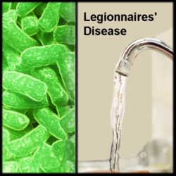 Minimising the risks of legionellosis #1