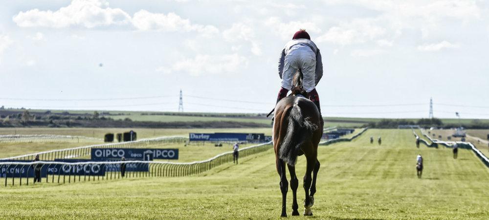 Copy of jockey riding away hero.jpg