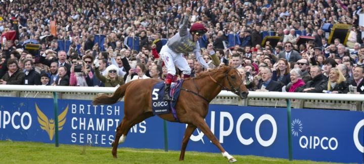 winning horse thumb.jpg