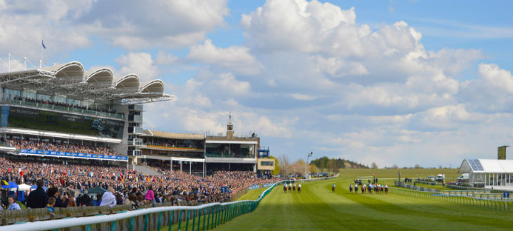 racecourse thumb.jpg