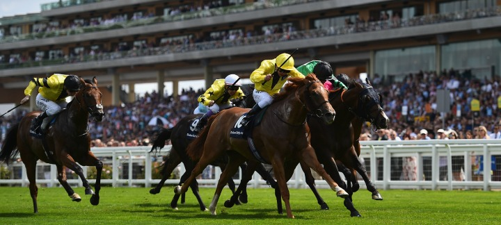 The Dubai Duty Free Shergar Cup Dubbed the Ryder Cup of horseracing, The Shergar Cup is an annual horse racing spectacle usually held at the beginning of August at Ascot; but cast your mind back to late 90's, and you may remember this wasn't always the case.