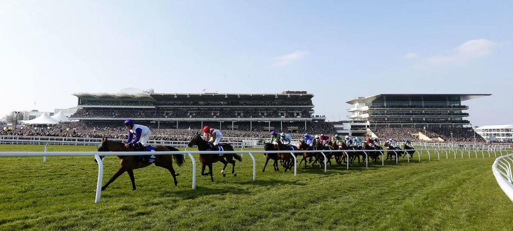grandstand-horses-from-track-hero.jpg