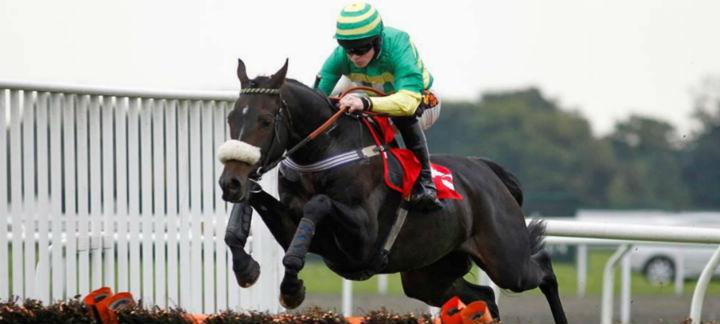 horses-jump-high-thumb.jpg