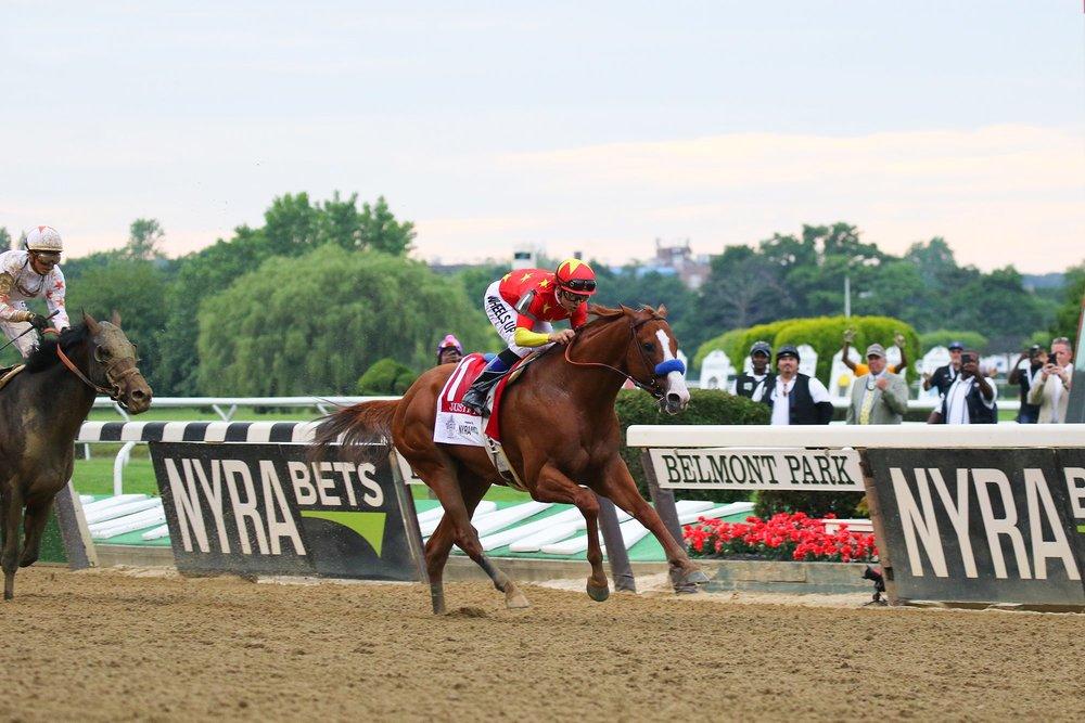 Justify_-_2018_Belmont_Stakes.jpg