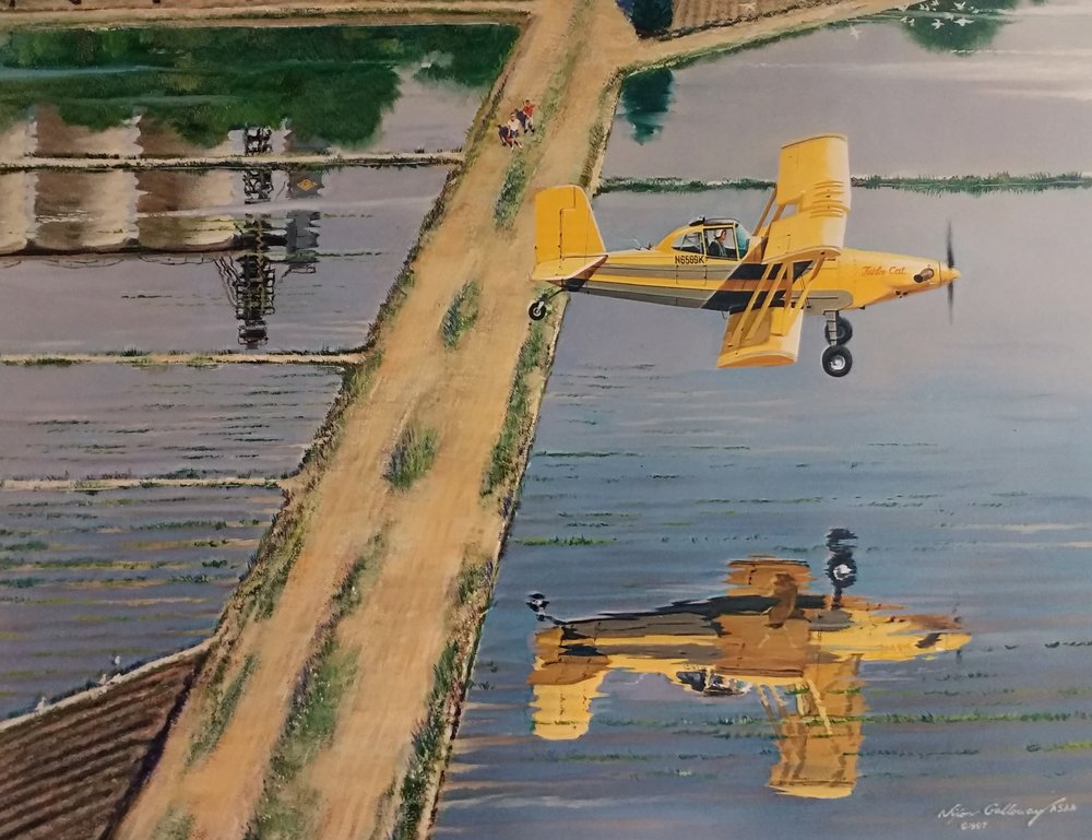 Wings 1997_Nixon Galloway.jpg