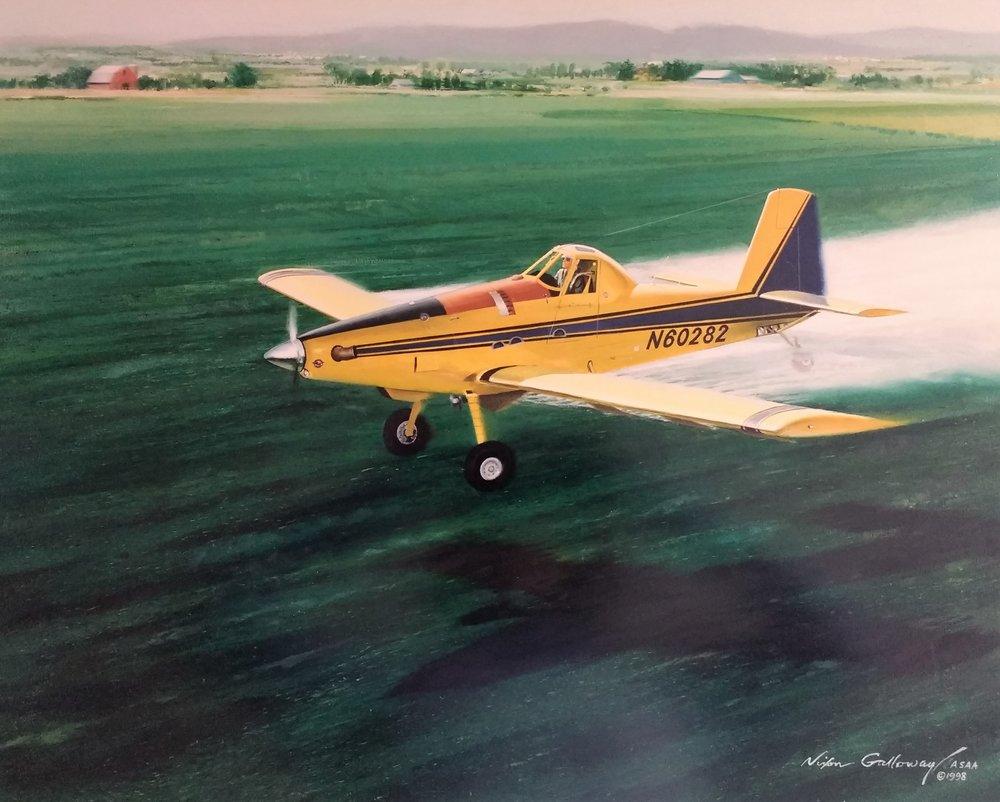 Wings 1998 _Nixon Galloway.jpg