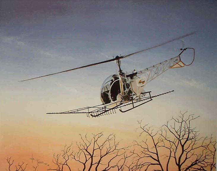 Wings 1985_Hal Tacker.JPG