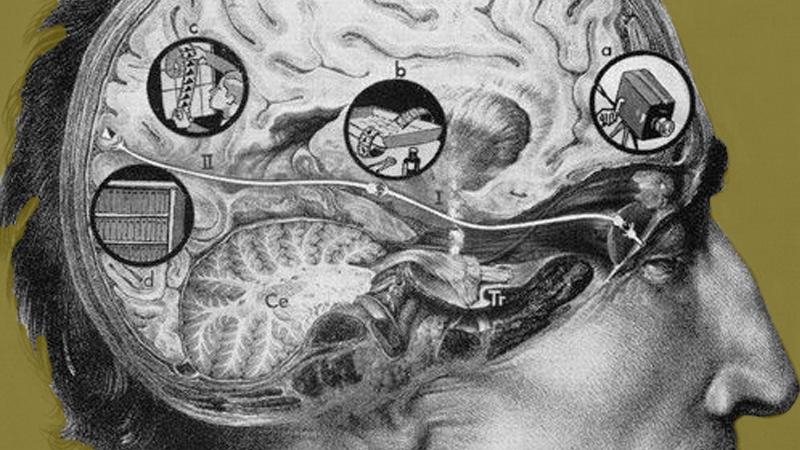 La memoria, esa extraña cámara cinematográfica de nuestra mente. © Fritz Kahn,  Maschine Mensch