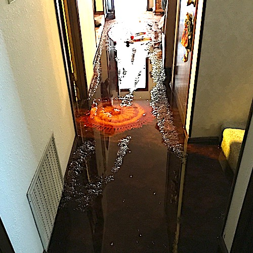 WATER DAMAGE IN RESIDENTIAL HOME