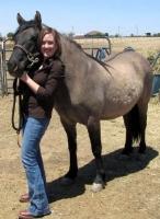 Chera Hammons    Bear Country  Horse Dealer  Arachnology