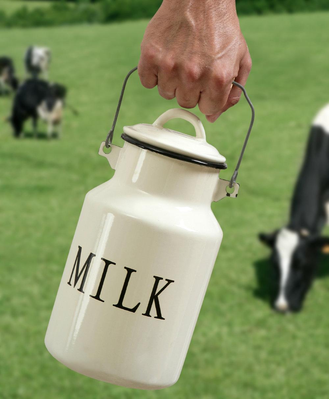 Milk_cropped.jpg
