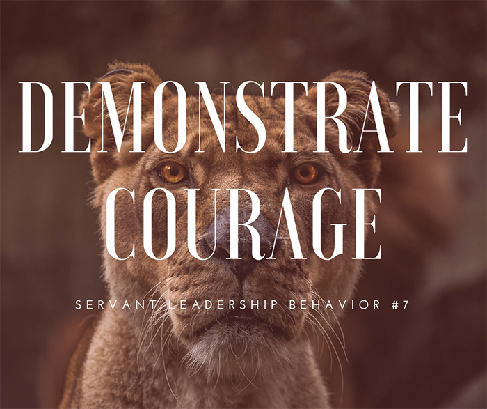 How to Demonstrate Courage - Take a listen at our latest Webinar Where Art Barter explains the importance of the SLI behavior