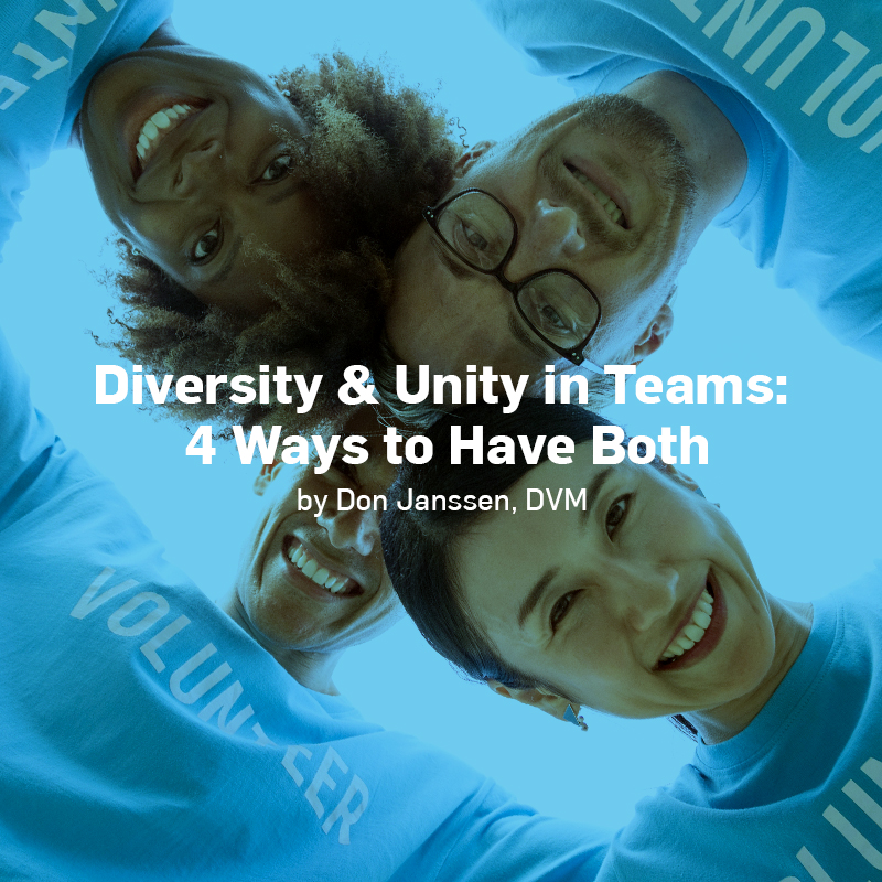 Diversity and Unity in Teams